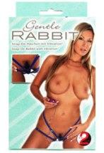 Gentle-Rabbit